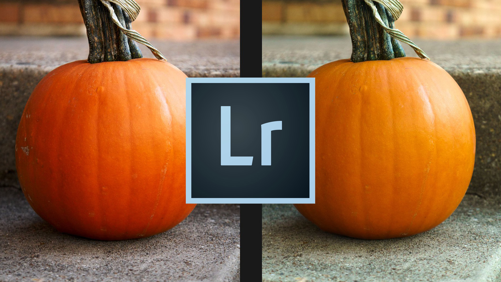 What you DON'T know about RAW image files :: Lightroom vs Capture One